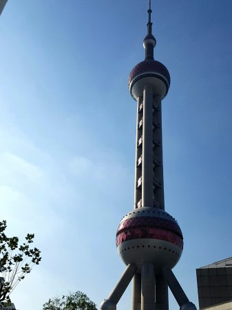 Oriental Pearl Tower (Dongfang Mingzhu): view from the entrance of the aquarium