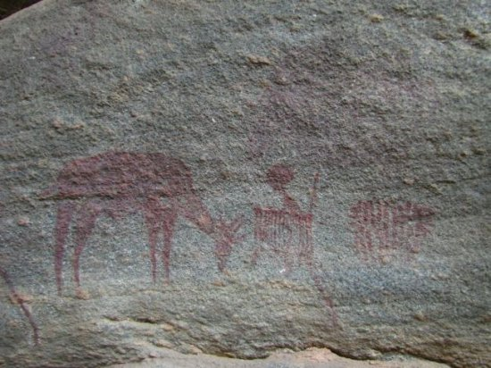 Kondoa Rock-Art Sites: This gazelle and images of giraffe, rhino are significant as none of these animals are found nea