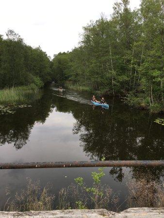Vaxjo, Sweden: photo1.jpg