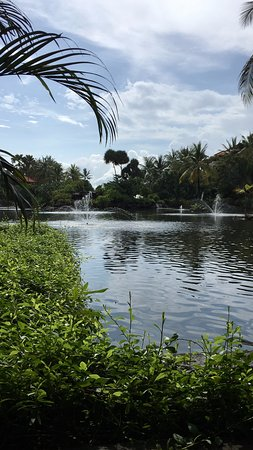 Ayodya Resort Bali: озеро на территории отеля