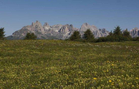 Bellamonte, Italy: Dal passo Lusia d'estate