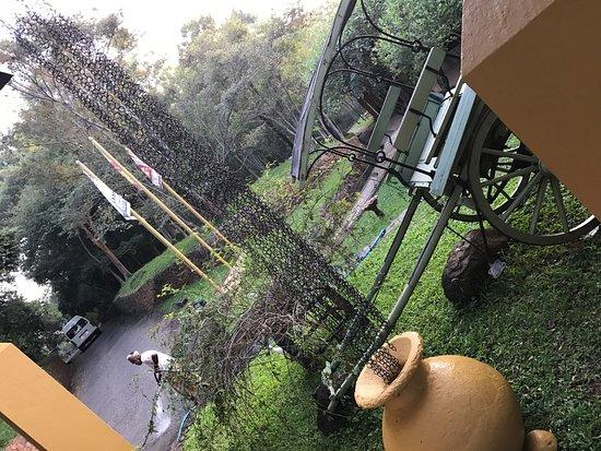 阿瑪亞湖酒店照片