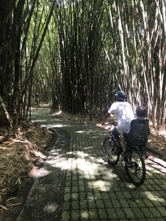Bali Hai Bike Tours: photo0.jpg