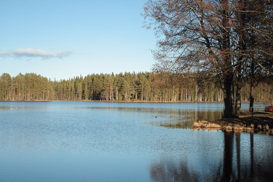 Sandviken, Suecia: Just a few minutes walk from the hotel you have this gorgeous view.
