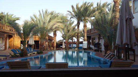 Acacia Dahab Hotel: 20170409_180000_large.jpg