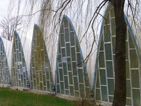 Memorial Nadia Comaneci Montreal