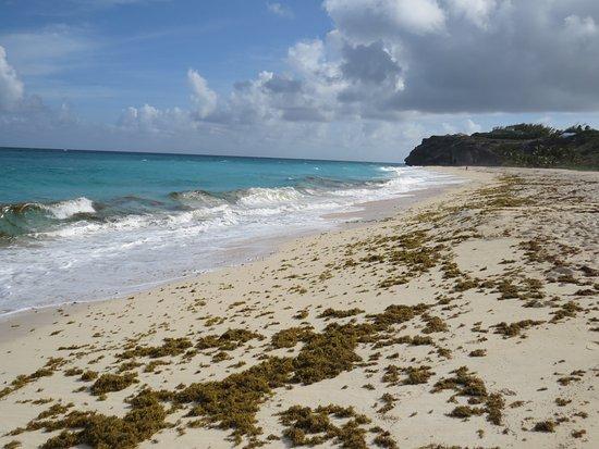 Foul Bay: Beach view