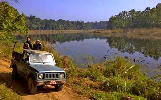 Image result for jeep safari in chitwan