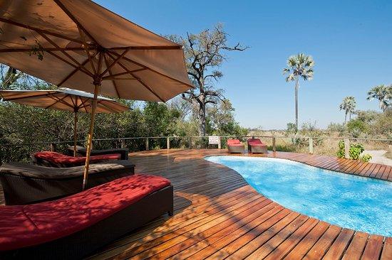 Wilderness Safaris Seba Camp: Pool Area at Seba Camp