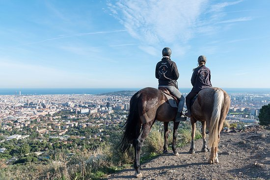 Sant Just Desvern, Espanha: Barcelona Views Horse Tour