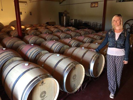 Algarve Wine Tours: photo2.jpg