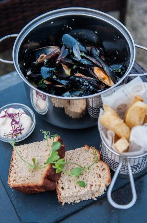 Magor, UK: Freshly harvested mussels...