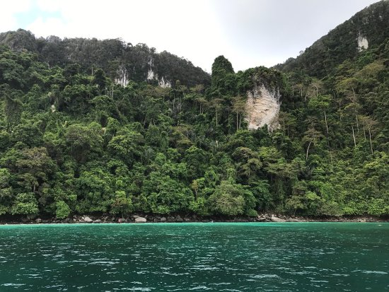 写真Laguna Tours枚