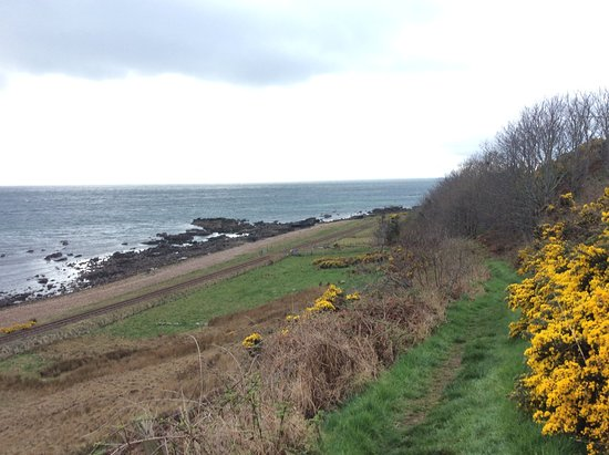 Helmsdale, UK: Beach less than 5 minutes walk from B&B