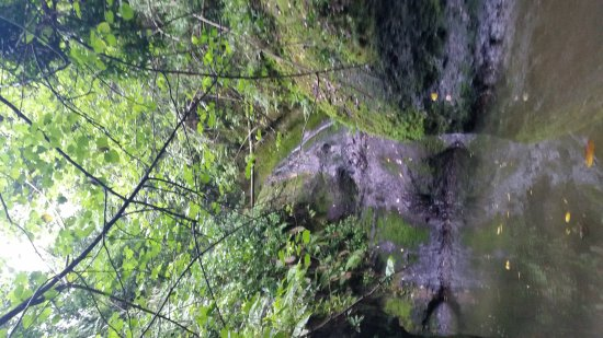 Wigmore's Waterfall: 20170406_105751_large.jpg