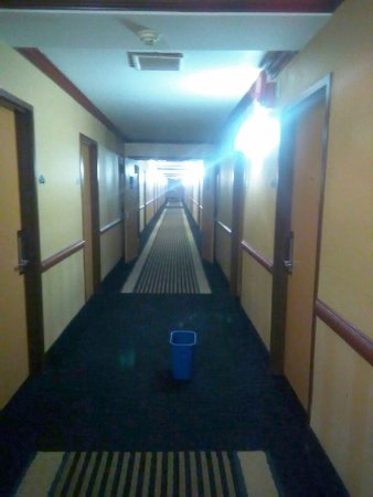 Wyndham Garden Newark Airport: one of several recycling bins collecting drips in the 6th floor hallway