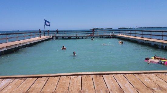 El area de la piscina natural picture of playa rosada for Piscina natural de puerto santiago