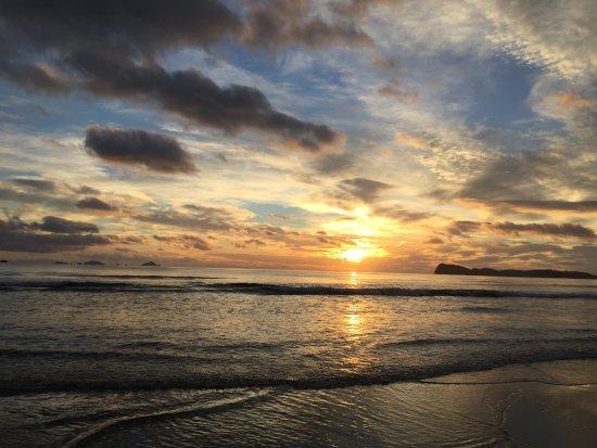 Pauanui Picture