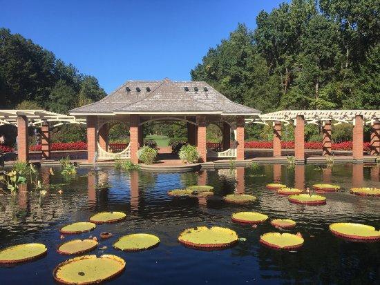 Botanical gardens picture of huntsville botanical garden - Huntsville botanical gardens hours ...