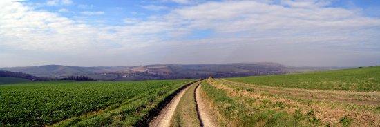 The Sussex Downs nr Litlington © Robert Bovington