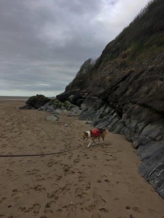 Llansteffan Beach: Lovely walking at low tide