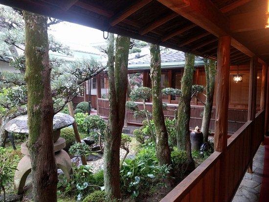 inner garden with rain 桜井市 料理旅館 大正楼の写真 トリップ