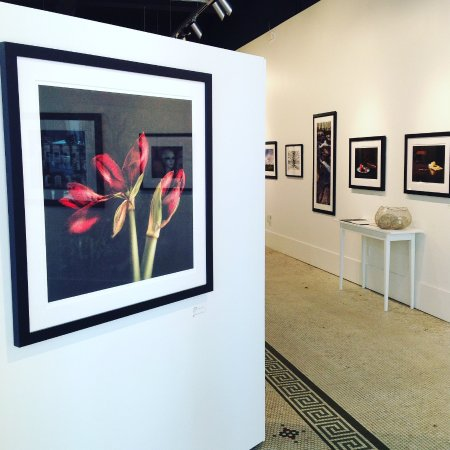 Charleston, WV: Shot inside the gallery