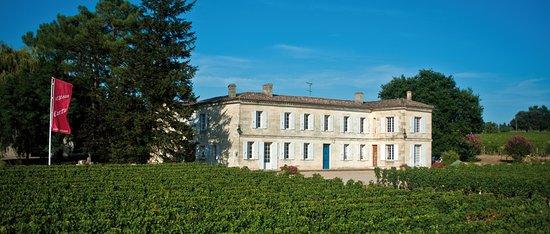 Château Carteau Côtes Daugay