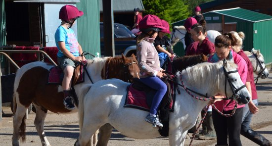 Anglesey Riding Centre : Kids are welcome!