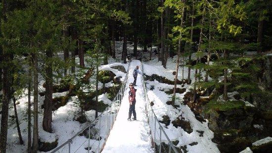 The Whistler Train Wreck Trail : suspension bridge