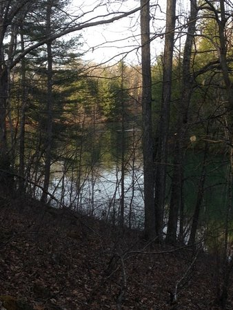 Lake Stephens Campground: Trail View