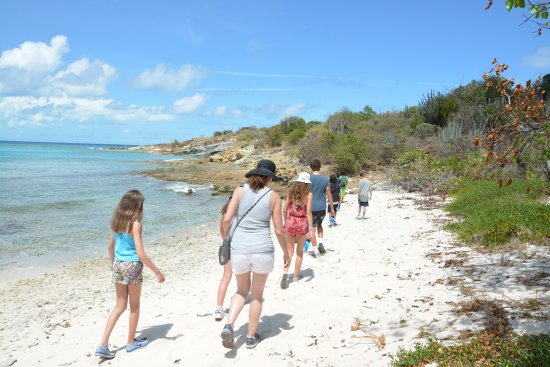 North Sound, Virgin Gorda: Off to visit and learn about the tortoises and lemurs.