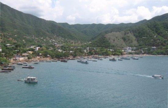 Calipso Dive Center: Playas de Taganga