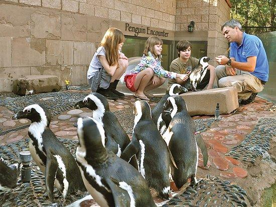 Family Fun at the Long Island Aquarium