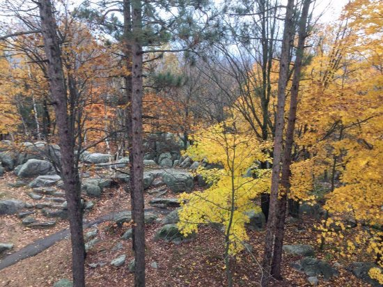 Wausau, WI : Typical wooded, rocky area on top of Rib Mountain