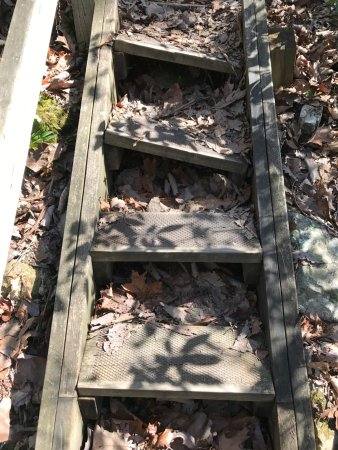 Spring City, TN: Some loose steps