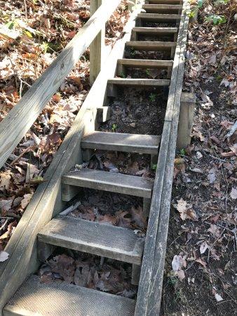 Spring City, เทนเนสซี: Missing steps