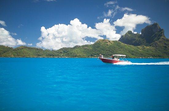 Bora Dream Pictures & Lagoon Tours : Enjoy the gorgeous lagoon