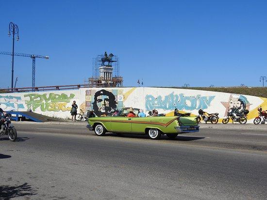 Whitehawk Birding and Conservation-Day Tours: Havana