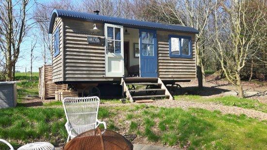 Yelverton, UK: Halcyon shepherd's hut