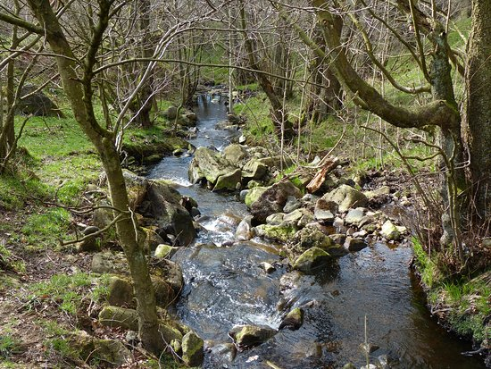 Hathersage, UK: Hood Brook