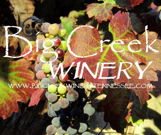 Pulaski, TN: Tour the Winery Before You Taste the Wines