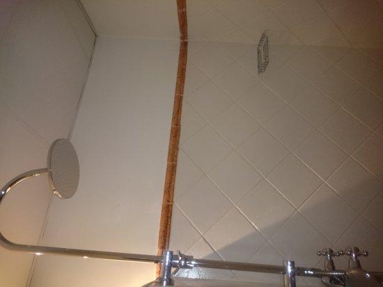 El Bosc: Baño super limpio