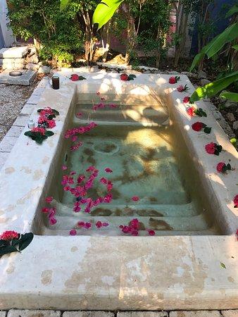 Hacienda San Jose, a Luxury Collection Hotel: photo1.jpg