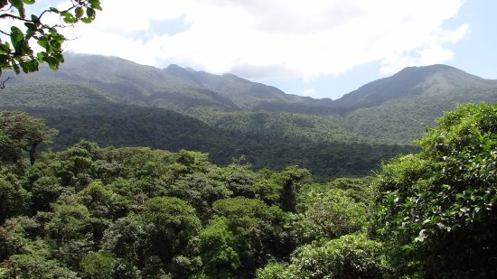 Tenorio Volcano National Park, Costa Rica: The view from the overlook. Gorgeous.