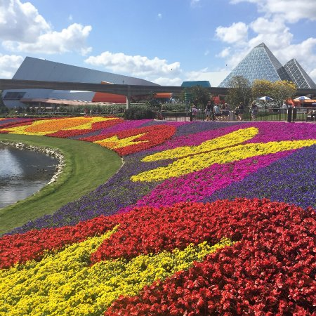 Disney Epcot Flower Garden Festival 2017 Colorful Blooms