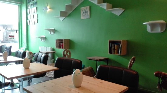 Le New Chattouille Saint Gilles Restaurant Reviews Photos Tripadvisor
