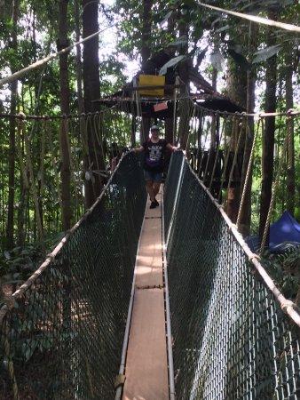 Национальный парк Таман-Негара, Малайзия: Crazy oplevelse.... skøn, skræmmende, livsbekræftende, åndenødsfremkaldende, panikangst, breatht