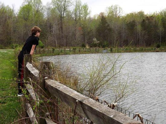 Stafford, VA: Patawomeck Park