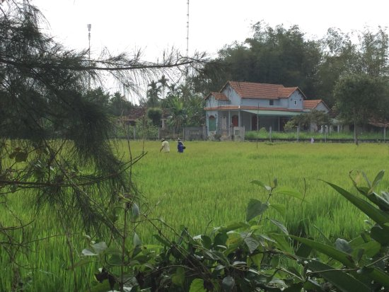 Провинция Куангнгай